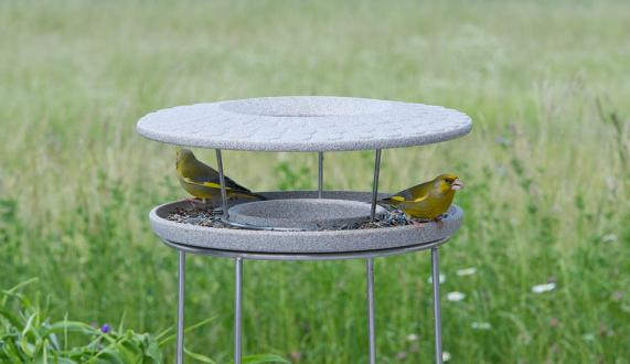 Bird Table Granicium